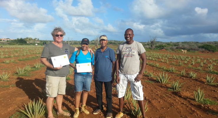 Onima Aloe and Punta Blanca farm to receive funding from POP Bonaire