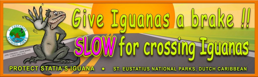 Stenapa with bumper sticker to protect iguanas