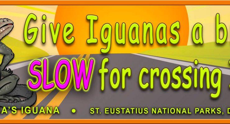 Stenapa with bumper sticker to protect iguanas
