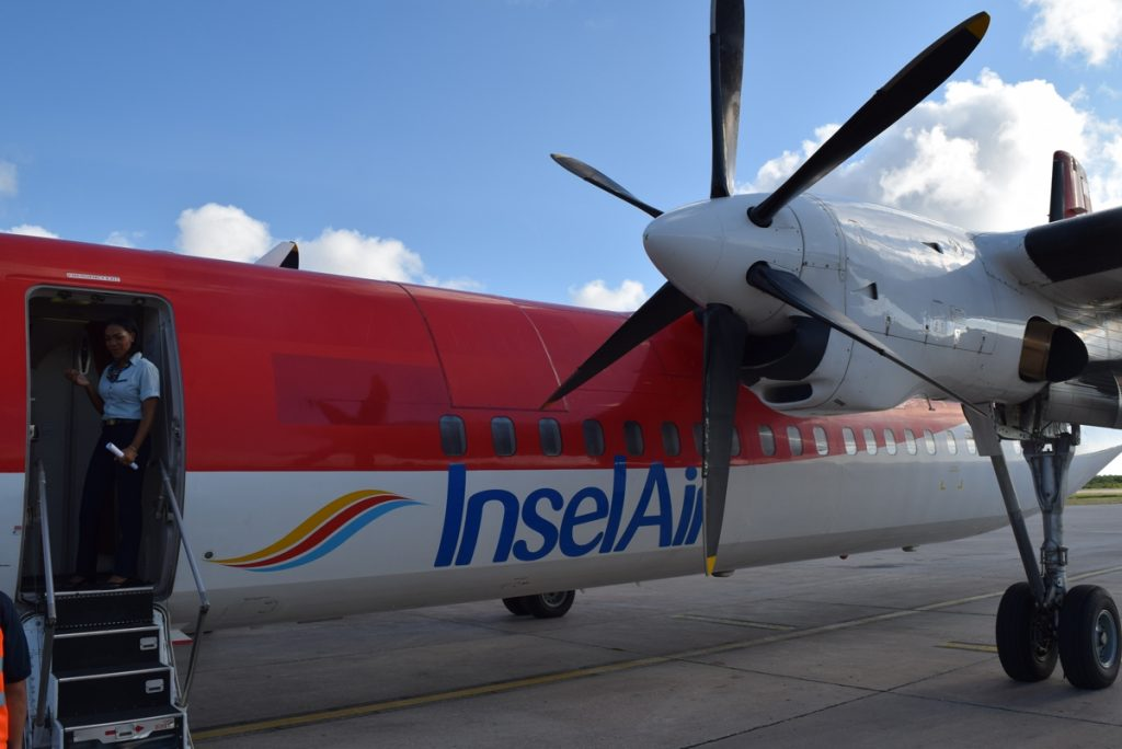 Insel Air CEO resigns