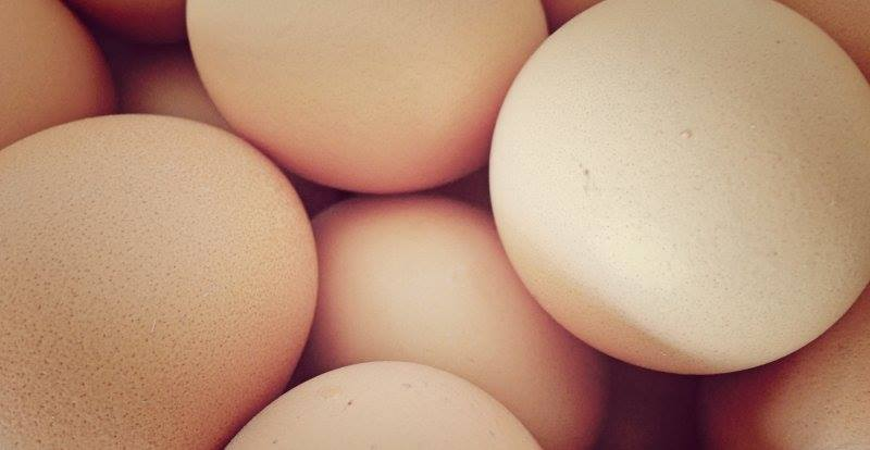 New maximum prices stipulated for eggs on Bonaire