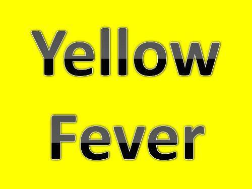 Yellow Fever in Brasil