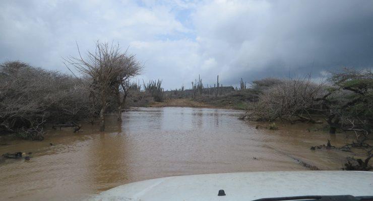 Washington Slagbaai park remains closed after heavy rains