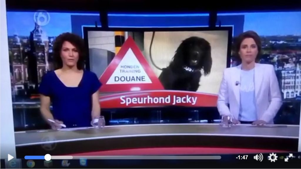 Customs Dog killed in traffic accident was featured on Dutch TV