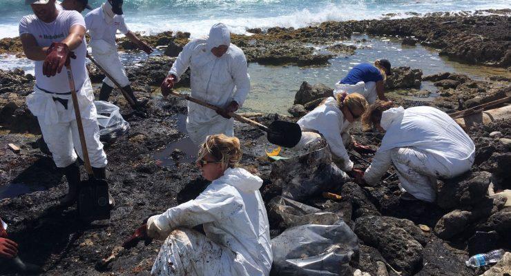 Volunteers have cleaned up Bonaire's east coast