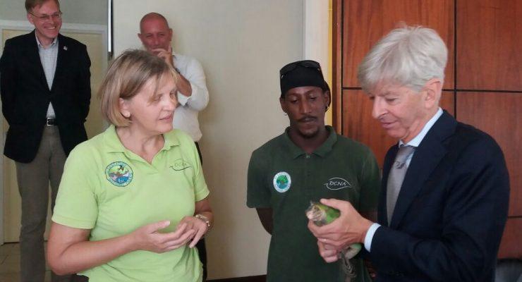 Minister Plasterk informed about Statia's iguanas