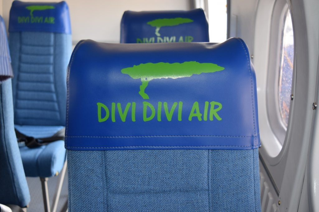 Divi headrest