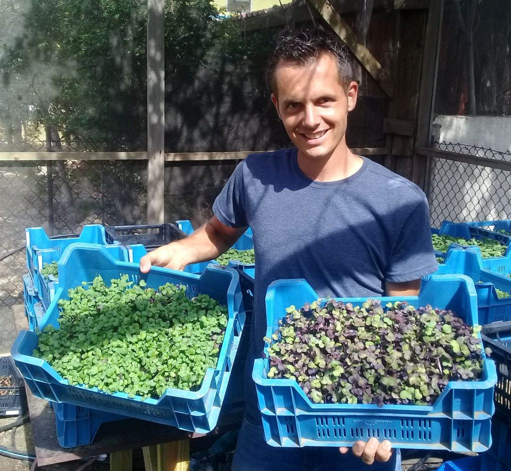 Horticulturalist Arie Broers to Start Growing Microgreens on Bonaire