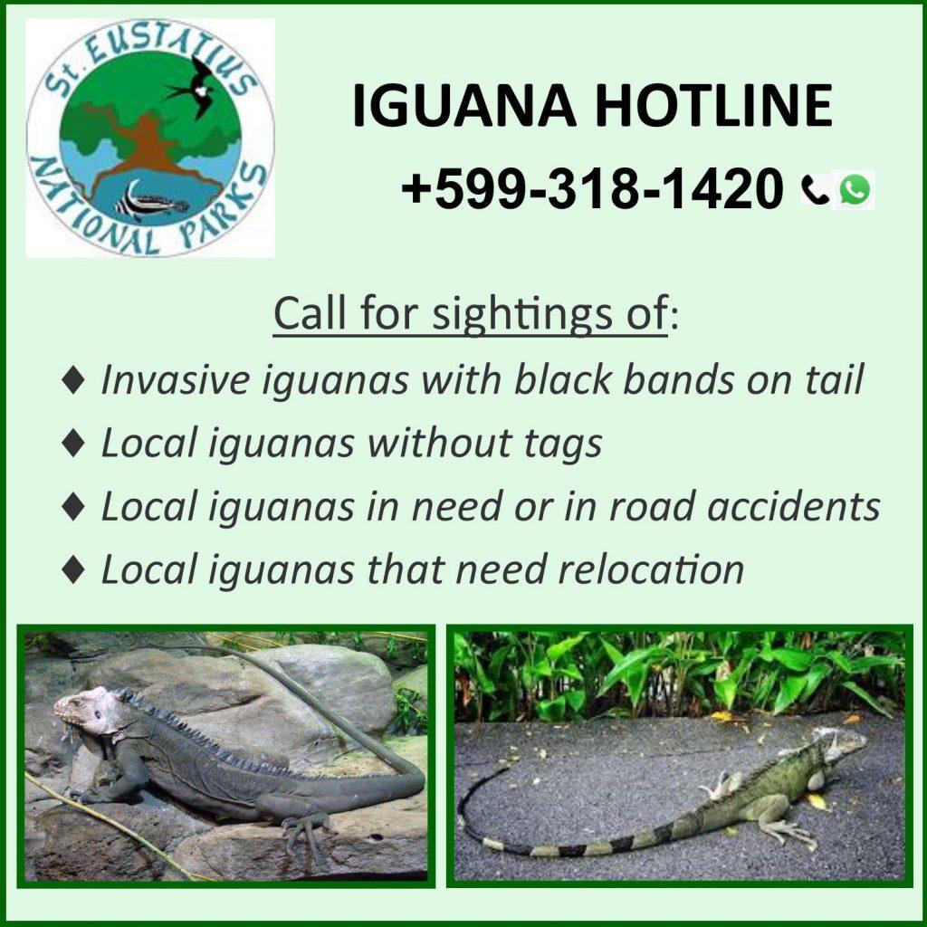 Iguana Hotline