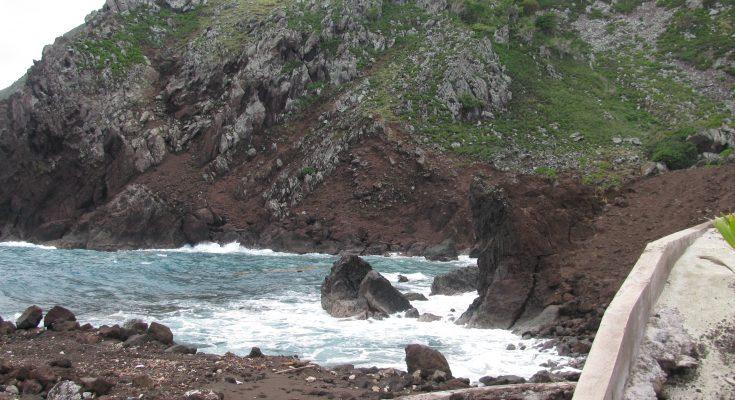 Saba presents Reforestation and Waste Management proposals