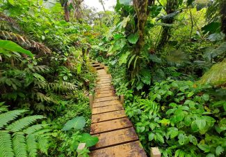 Saba needs to work on New Tourism Master Plan