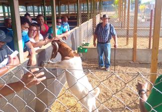 Succesful Goat Farming training Bonaire wrapped up